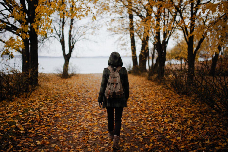 Marcher dans les bois , nature et marche